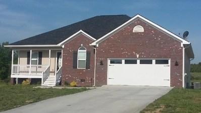 146 Hurds Pathway, Calhoun, GA 30701 - #: 6526468
