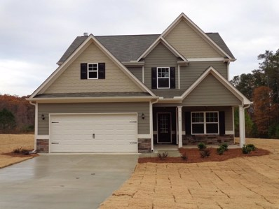 16 Clydesdale Court, Dallas, GA 30157 - #: 6578589