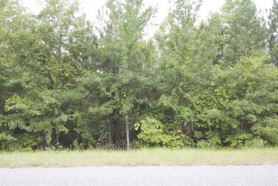 Bastonville Road, Gibson, GA 30810 - #: 338262