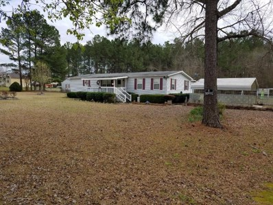 219 Old Louisville Road, Keysville, GA 30816 - #: 438279