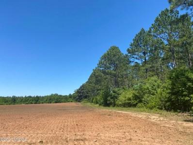 1 Plains Highway, Dawson, GA 39842 - #: 160382