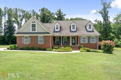 217 Hummingbird Ct, Hampton, GA 30228 - #: 8640791
