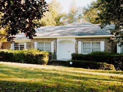 222 Old Ailey Lothair Rd, Mount Vernon, GA 30445 - #: 8882285