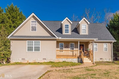 255 Tommy Irvin, Mount Airy, GA 30563 - #: 8905121