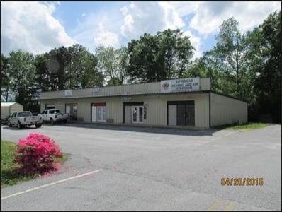 4035 S Highway 19 41, Hampton, GA 30228 - #: 9020944