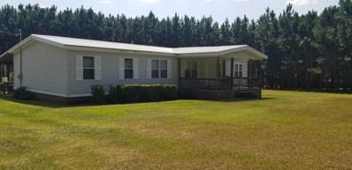 20 Nunez Circle Drive, Swainsboro, GA 30401 - #: 9050633