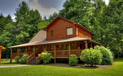 119 Chase Hollow, Blue Ridge, GA 30513 - #: 278659