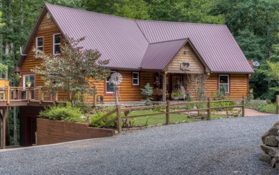 312 Learh Lane, Ellijay, GA 30540 - #: 280317