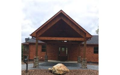 The Highlands, Mineral Bluff, GA 30559 - #: 281491