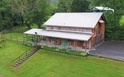 300 Stamey Cove Rd., Hayesville, NC 28904 - #: 281970