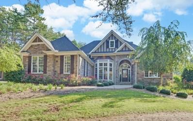 679 Owen Vista, Blairsville, GA 30512 - #: 282182