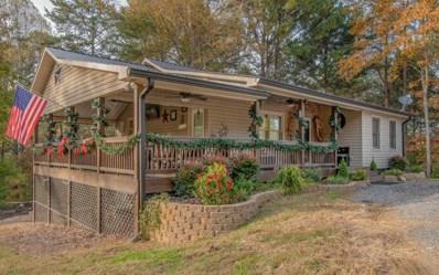 155 Wash Wilson Loop, Blue Ridge, GA 30513 - #: 283272
