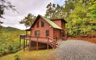 434 Martins Crossing, Blue Ridge, GA 30513 - #: 285089