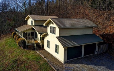 387 East Double Knobs Dr, Hayesville, NC 28904 - #: 285192