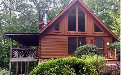 405 Donna Lee Ln, Mineral Bluff, GA 30559 - #: 287042