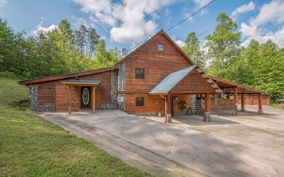 246 Deal Hollow Rd, Copperhill, TN 37317 - #: 287225