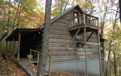 878 Julie Mountain Trail, Hayesville, NC 28904 - #: 287918