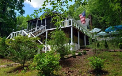 20 Wildhog Creek Terr, Suches, GA 30572 - #: 288197