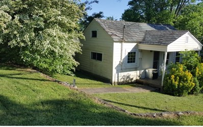 291 East Second St, Blue Ridge, GA 30513 - #: 288335
