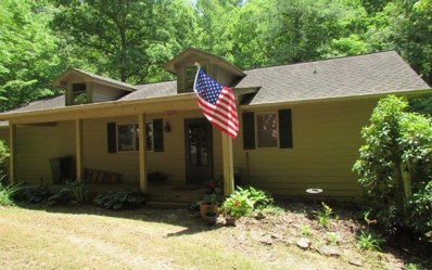 1396 Cherokee Trail, Young Harris, GA 30582 - #: 288595