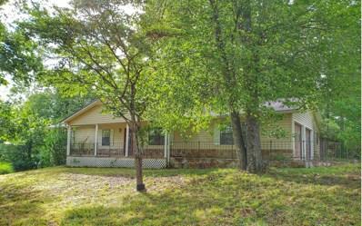 1722 Curtis Switch Road, Mineral Bluff, GA 30559 - #: 289431