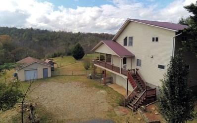 101 Robert Hull Lane, Blairsville, GA 30512 - #: 293405