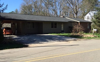 66 Summit St, Blue Ridge, GA 30513 - #: 294032