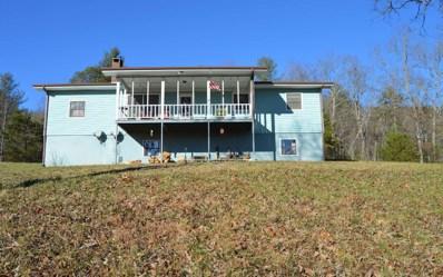95 Lois Lane, Hayesville, NC 28904 - #: 294285
