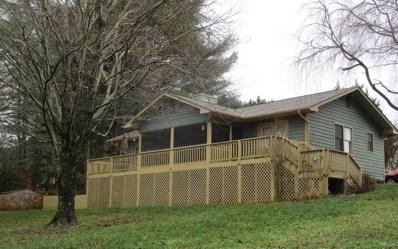 41 Little Brook Terrace, Hayesville, NC 28904 - #: 294553
