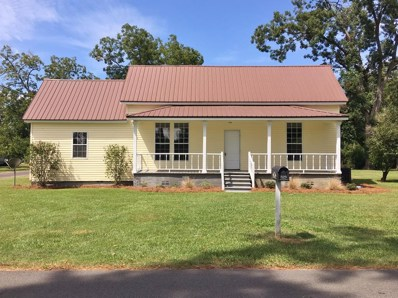 323 S Church St. Doerun, Doerun, GA 31744 - #: 119236