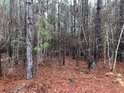 Old Timey Trail, Moultrie, GA 31788 - #: 124279