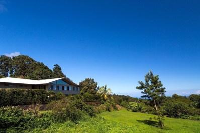 46-3692 Old Mamalahoa Hwy, Honokaa, HI 96727 - #: 622460