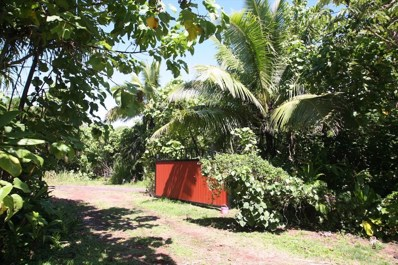 1111 Government Beach Rd, Pahoa, HI 96778 - #: 633148