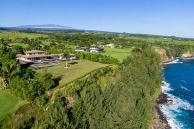 31-168 Hawaii Belt Hwy, Hakalau, HI 96710 - #: 633294