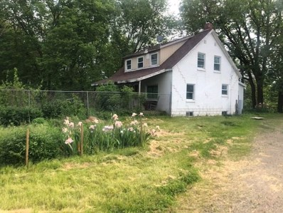 17491 State Hwy 70, Conesville, IA 52739 - #: 202003550