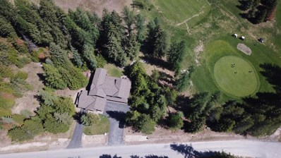 50 Fairway Dr, Priest Lake, ID 83856 - #: 18-5347