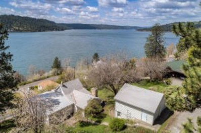104 S Terrace Ct, Harrison, ID 83833 - #: 19-12011