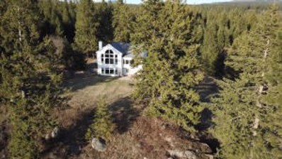 473 Marydel Lane, Bonners Ferry, ID 83805 - #: 19-12527
