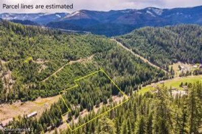 1706a Nine Mile Road Road, Wallace, ID 83873 - #: 21-4497