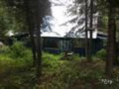 5 Fir Drive, Cascade, ID 83611 - #: 529195