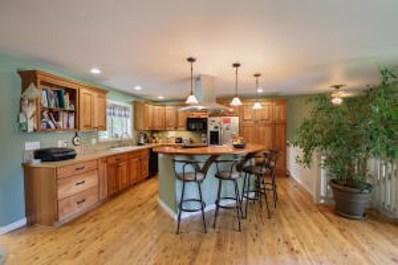 1555 Baldy View Dr, Hailey, ID 83333 - #: 18-323181