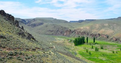 45 Ranch Road, Riddle, ID 83604 - #: 19-325011