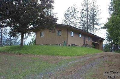 133 Cedar Mill Road, Kamiah, ID 83536 - #: 314635