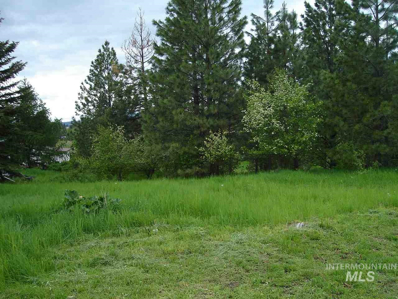 Lot 16 O\'Reilly\'s Addition, Deary, ID 83823 - #: 98730366