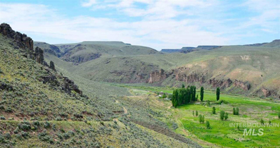 45 Ranch Road, Riddle, ID 83604 - #: 98753720