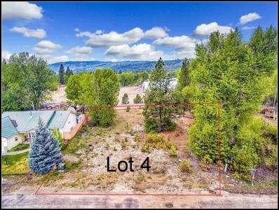 Lot 4 Mores Creek Crossing, Idaho City, ID 83631 - #: 98780200