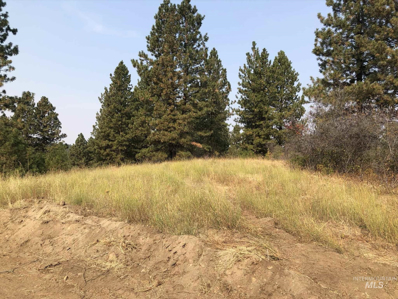 Tbd Lot 20 Outlaw Trail, Banks, ID 83602 - #: 98783748