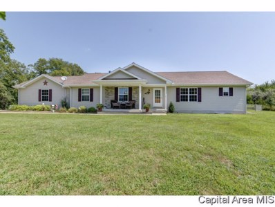 22325 Clemens Rd, Athens, IL 62613 - #: 185765