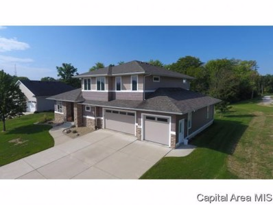 509 Parkview Dr, Rochester, IL 62563 - #: 186253