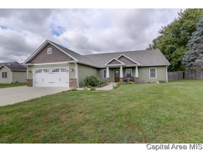 203 Barn Hollow, Athens, IL 62613 - #: 186369